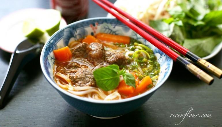 vietnamese beef stew recipe banner